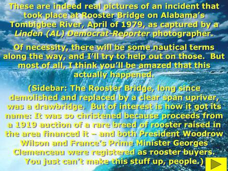 These are indeed real pictures of an incident that took place at Rooster Bridge on Alabama's Tombigbee River, April of 1979, as captured by a Linden (AL)