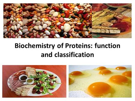 Biochemistry of Proteins: function and classification.