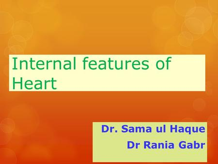 Internal features of Heart Dr. Sama ul Haque Dr Rania Gabr.