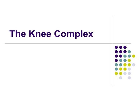 The Knee Complex. A.General Structure & Function B.Structure & Function of Specific Joints C.Muscular Considerations.