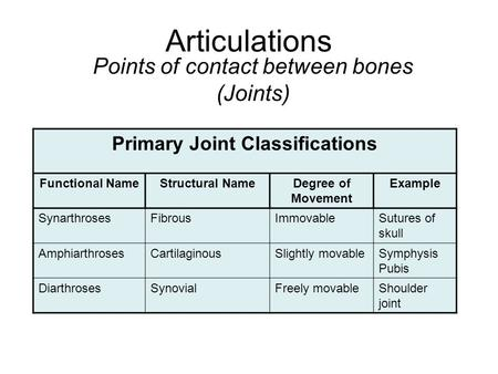 Articulations Points of contact between bones (Joints) Primary Joint Classifications Functional NameStructural NameDegree of Movement Example SynarthrosesFibrousImmovableSutures.