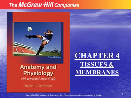1 Copyright © The McGraw-Hill Companies, Inc. Permission required for reproduction or display. CHAPTER 4 TISSUES & MEMBRANES.
