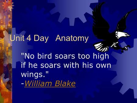 Unit 4 Day Anatomy No bird soars too high if he soars with his own wings. -William BlakeWilliam Blake.
