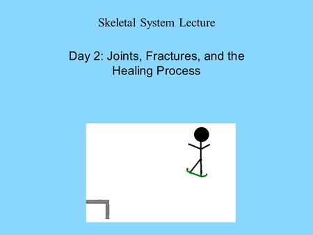 Skeletal System Lecture Day 2: Joints, Fractures, and the Healing Process.