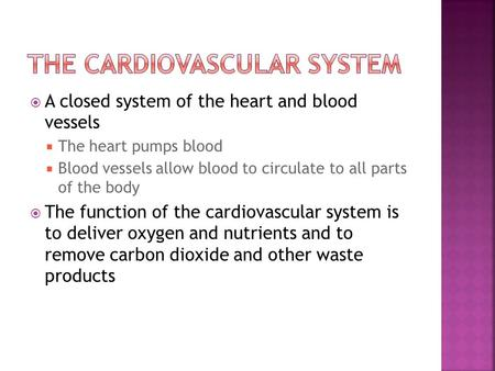  A closed system of the heart and blood vessels  The heart pumps blood  Blood vessels allow blood to circulate to all parts of the body  The function.