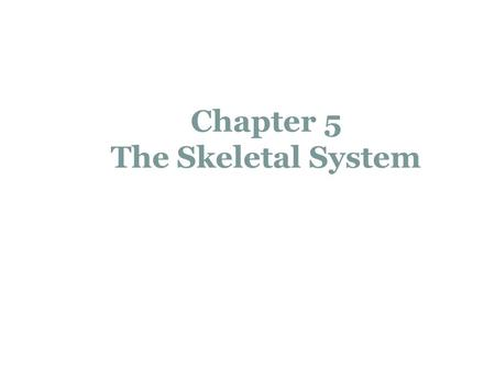 Chapter 5 The Skeletal System. The Skeletal System Parts of the skeletal system  Bones (skeleton)  Joints  Cartilages  Ligaments Divided into two.