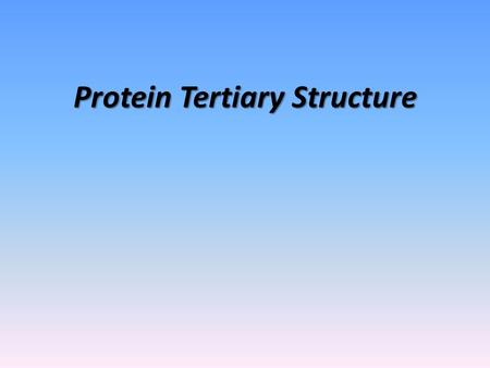Protein Tertiary Structure. What to Know What are some protein functions? General principles for protein folding General structural features of globular.