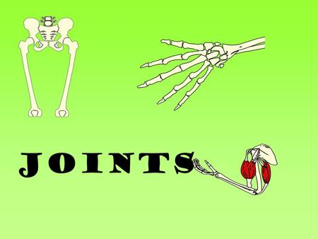 JOINTS. Learning Objectives To know the different joint types To understand how to classify joint types To be able to discuss the importance of the structure.