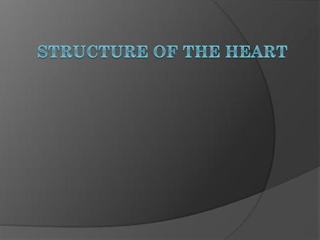 Structure of the Heart.