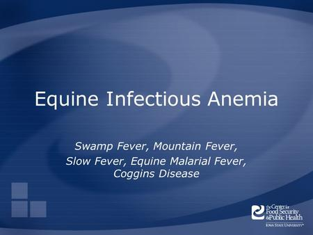 Equine Infectious Anemia Swamp Fever, Mountain Fever, Slow Fever, Equine Malarial Fever, Coggins Disease.