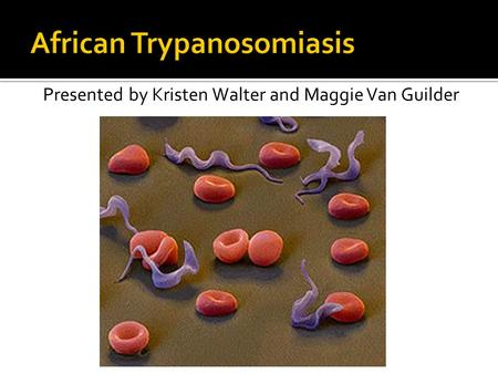 human african trypanosomiasis a critical review African trypanosomiasis the african sleeping sickness is a human african trypanosomiasis or sleeping sickness is a detection of parasites is critical to.