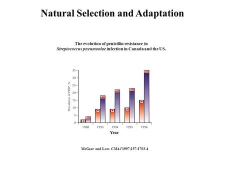 Natural Selection and Adaptation McGeer and Low. CMAJ 1997;157:1703-4 The evolution of penicillin resistance in Streptococcus pneumoniae infection in Canada.