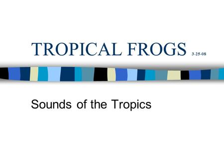 TROPICAL FROGS 3-25-08 Sounds of the Tropics. SIZE: THE RANGE IS HUGE Bufo metamorph. Bufo marinus from Surinam.