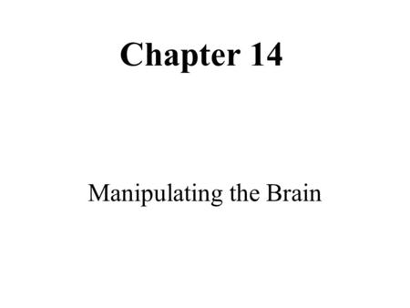 Chapter 14 Manipulating the Brain. Electrical Activity in the Brain.