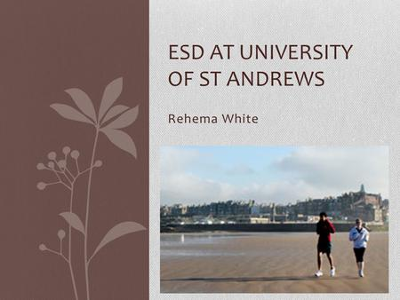 Rehema White ESD AT UNIVERSITY OF ST ANDREWS. contents 'academic excellence' SD Programme Other aspects of SD at the University Future plans.