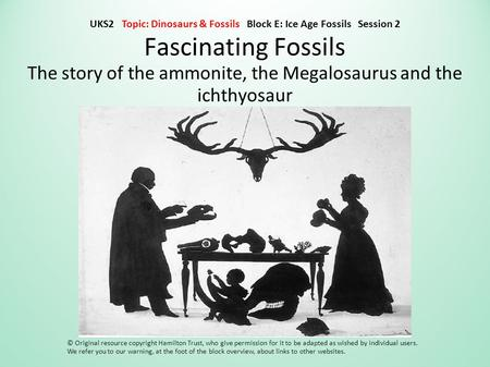 Fascinating Fossils The story of the ammonite, the Megalosaurus and the ichthyosaur © Original resource copyright Hamilton Trust, who give permission for.