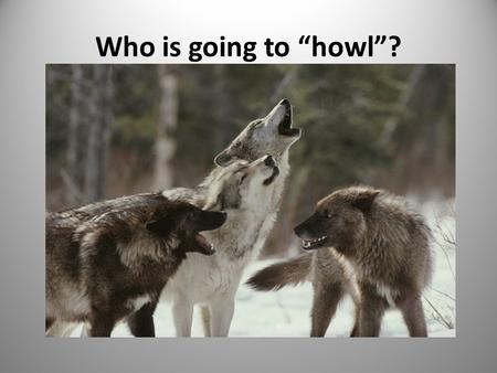 "Who is going to ""howl""?. 2 I believe something should be done to intervene in problematic situations. A. Strongly Agree B.Agree C.Neutral D.Disagree E.Strongly."