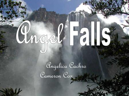 Angelica Cachro Cameron Cox Located in the Guayana Highlands Water free falls 2,421 feet to the river below, making it the tallest waterfall on earth.