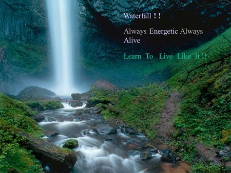 Waterfall ! ! Learn To Live Like It !! Always Energetic Always Alive.
