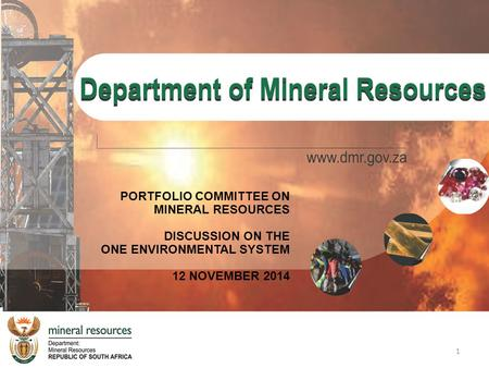 PORTFOLIO COMMITTEE ON MINERAL RESOURCES