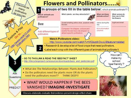 Flowers and Pollinators....... In groups of two fill in the table below: which animals pollinate?? Which animals are pollinators? Which plants are they.