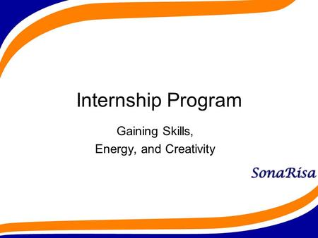 Internship Program Gaining Skills, Energy, and Creativity.