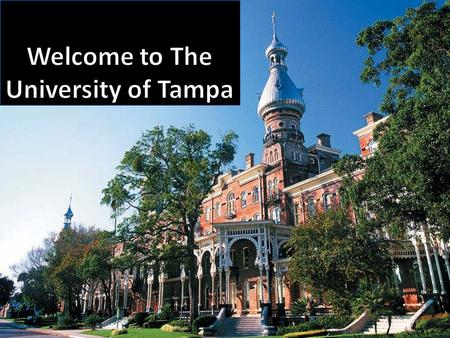 *Your folder may be another color Mentoring Philosophy Practicum I, II, III, and IV experiences are offered at The University of Tampa Students are at.