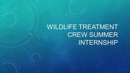 WILDLIFE TREATMENT CREW SUMMER INTERNSHIP. WHAT IS WILDLIFE TREATMENT CREW? A student run and organized course designed to expose veterinary underclassmen.