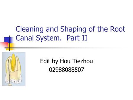 Cleaning and Shaping of the Root Canal System. Part II
