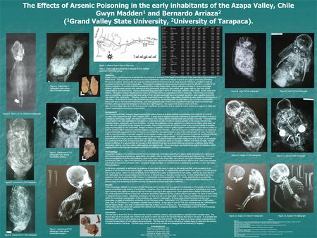 The Effects of Arsenic Poisoning in the early inhabitants of the Azapa Valley, Chile Gwyn Madden 1 and Bernardo Arriaza 2 ( 1 Grand Valley State University,