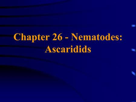 Chapter 26 - Nematodes: Ascaridids. Family Ascarididae Ascaris lumbricoides A large intestinal roundworm of humans; females may attain lengths of 30 cm!