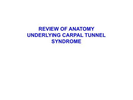 REVIEW OF ANATOMY UNDERLYING CARPAL TUNNEL SYNDROME