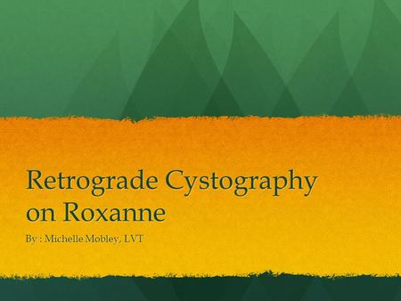 Retrograde Cystography on Roxanne By : Michelle Mobley, LVT.
