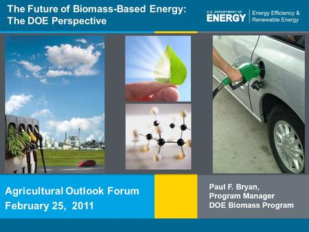Energy Efficiency & Renewable Energyeere.energy.gov 1 Program Name or Ancillary Texteere.energy.gov The Future of Biomass-Based Energy: The DOE Perspective.