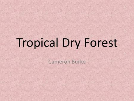 Tropical Dry Forest Cameron Burke. Tropical Dry Frests Type of forest found near the Equator that has distinct rainy and dry seasons.