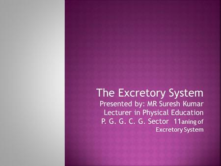 The Excretory System Presented by: MR Suresh Kumar Lecturer in Physical Education P. G. G. C. G. Sector 11 aning of Excretory System.