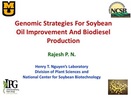 Rajesh P. N. Henry T. Nguyen's Laboratory Division of Plant Sciences and National Center for Soybean Biotechnology Genomic Strategies For Soybean Oil Improvement.