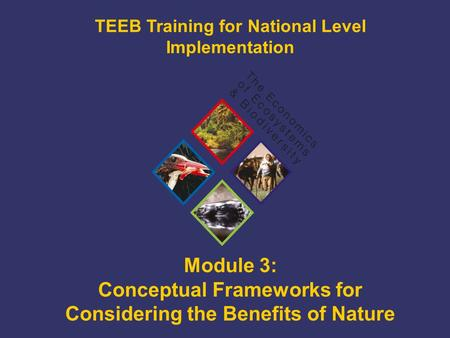 TEEB Training Module 3: Conceptual Frameworks for Considering the Benefits of Nature TEEB Training for National Level Implementation.