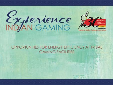 T OPPORTUNITIES FOR ENERGY EFFICIENCY AT TRIBAL GAMING FACILITIES.