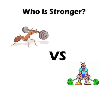 Who is Stronger? VS.