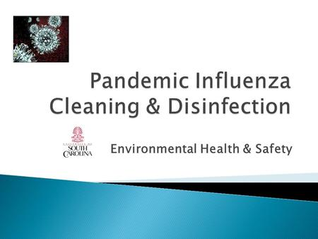 Environmental Health & Safety. I.Environmental Management II.Cleaning and Disinfection III.Cleaning Confirmed Cases of Flu IV.Use of Bleach V.Cleaning.