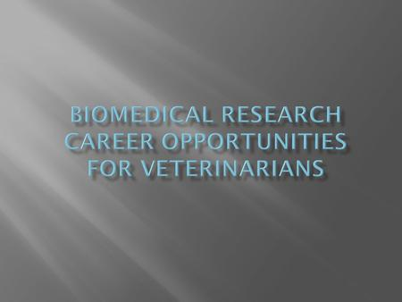  A Day in the Life of a Clinical Laboratory Animal Veterinarian  Research Opportunities  Fun Facts.