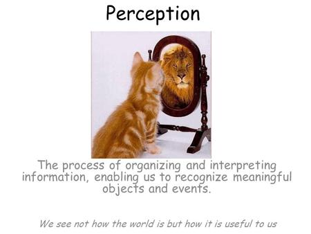 Perception The process of organizing and interpreting information, enabling us to recognize meaningful objects and events. We see not how the world is.