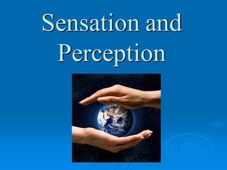 Sensation and Perception. Preassement to Sensation and Perception.