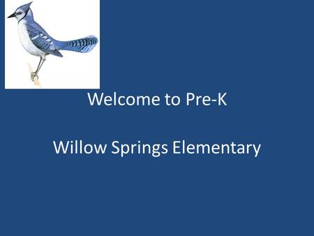 Welcome to Pre-K Willow Springs Elementary. Drop Off Procedures First two weeks of School If your child will be eating breakfast: – They are able to enter.