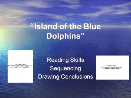 """Island of the Blue Dolphins"""