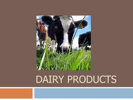 DAIRY PRODUCTS. Dairy Products  Essential as beverages as well as key ingredients in many dishes  Cheese is an important food served by itself or as.