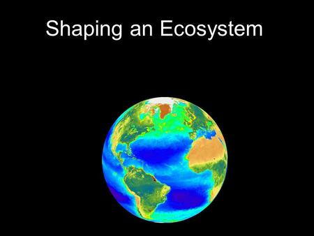 Shaping an Ecosystem. WHAT SHAPES AN ECOSYSTEM? __________________ All the living things an organism interacts with __________________ All the non-living.