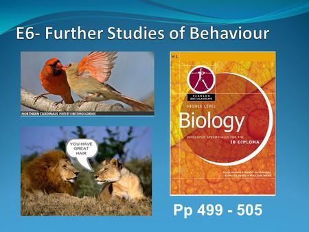 E6- Further Studies of Behaviour