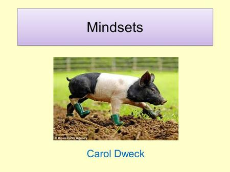 Mindsets Carol Dweck. Which of these statements do you agree with? 1.Your intelligence is something very basic about you that you can't change very much.